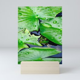 Peek  A Boo frog Mini Art Print