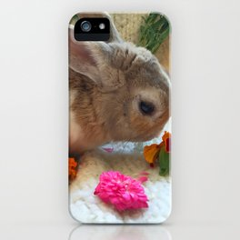 Bunny Eating Edible, Organic Flowers iPhone Case