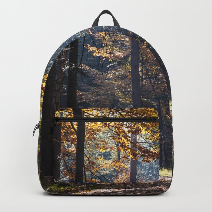 Colorful autumn Backpack