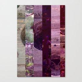crash_ 05 Canvas Print