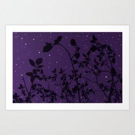 SkyA - Night Art Print