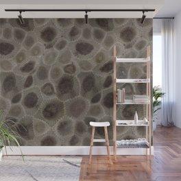 Petoskey Stone Wall Mural