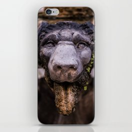 Stone Lion Head iPhone Skin