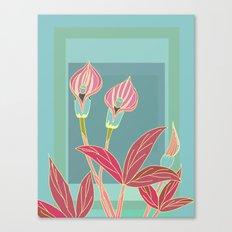 Arum Lilies II. Canvas Print