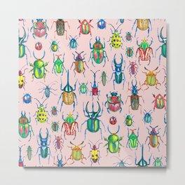 Colours of beetles pink Metal Print