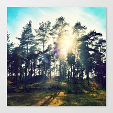 Sunset Veluwe Canvas Print
