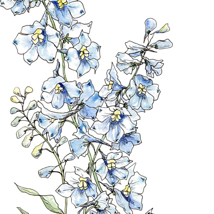 Blue Delphinium Flowers Duvet Cover
