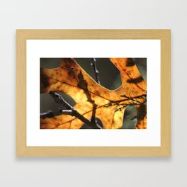 Rusty Brilliance Framed Art Print