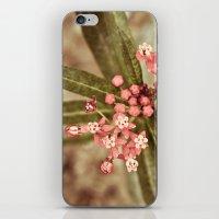 botanical iPhone & iPod Skins featuring Botanical by MZ Photography