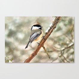 Clinging Chickadee Canvas Print
