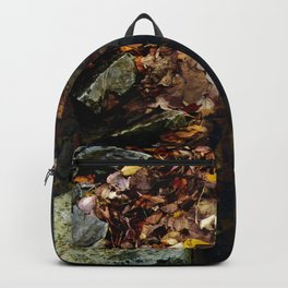 Autumn Colors in the Water Backpack
