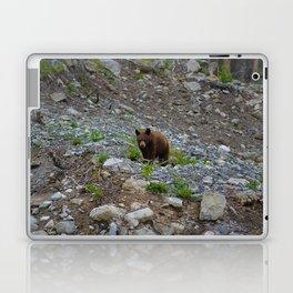 Black bear cub in Jasper National Park   Alberta Laptop & iPad Skin
