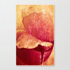 Poppy #II Canvas Print