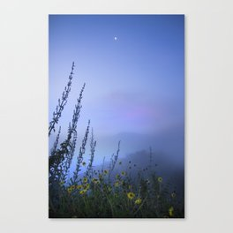 Del Sur 5am Canvas Print