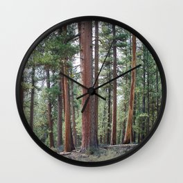Ponderosa Pine Forest Wall Clock