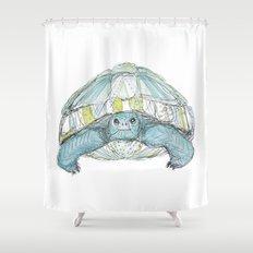 Turquoise Tortoise Illustration Shower Curtain