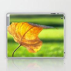 Fallen Laptop & iPad Skin