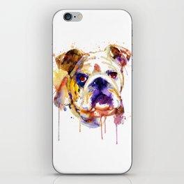 English Bulldog Head iPhone Skin