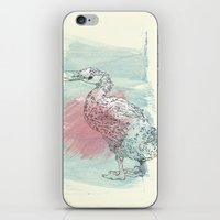 duck iPhone & iPod Skins featuring duck by Sabine Israel