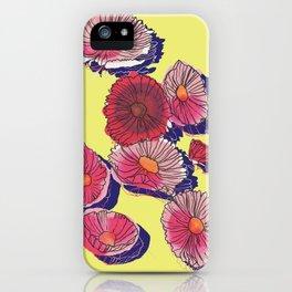 'Cosmos'politan / Flowers in sunlight iPhone Case
