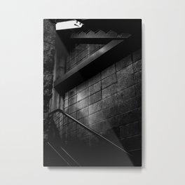 Lurking in the Shadows Metal Print