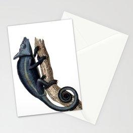 Parson's Chameleon Stationery Cards