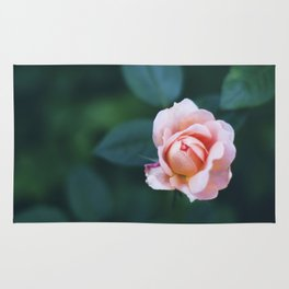 Single Rose Rug