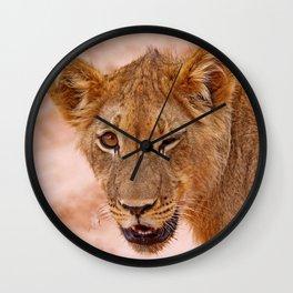 Winking lion - Africa wildlife Wall Clock