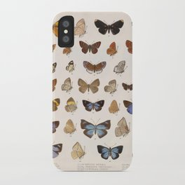 Vintage Scientific Insect Butterfly Moth Biological Hand Drawn Species Art Illustration iPhone Case