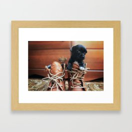 Teddy.  Framed Art Print