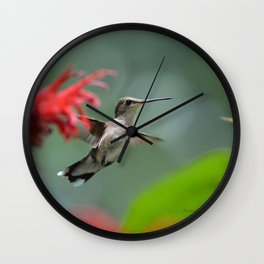 Hummingbird Flying II Wall Clock
