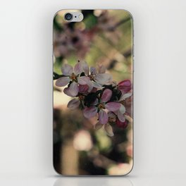 blossum iPhone Skin