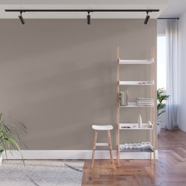 Dark Pastel Taupe Solid Color Parable to Wool Coat 1002-10A by Valspar Wall Mural
