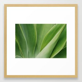 Maui Green Framed Art Print