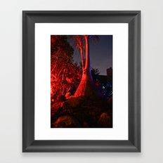 Crazy Tree Framed Art Print