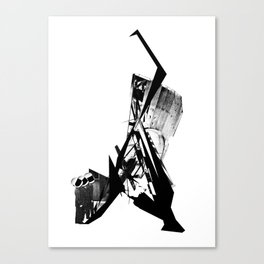 Up in the Sky... Canvas Print