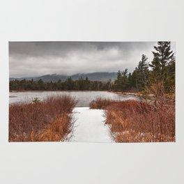 Winter Lily Pond Rug