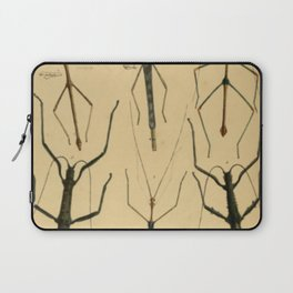 Naturalist Stick Insects Laptop Sleeve
