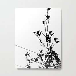 Botanical Contrast Metal Print