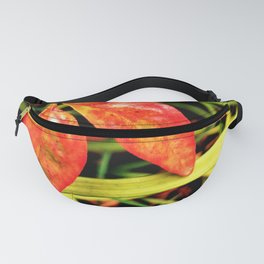 A Pair of Sunset Leaves Fanny Pack