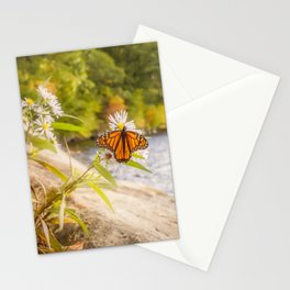 Autumn Butterfly Stationery Cards
