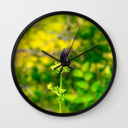 Spicebush Swallowtail Butterfly Wall Clock