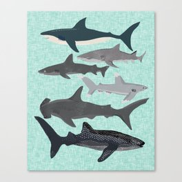 Sharks nature animal illustration texture print marine biologist sea life ocean Andrea Lauren Canvas Print