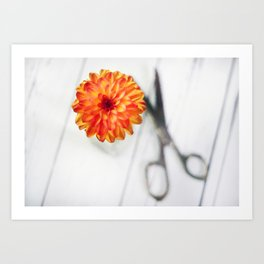 Freshly Cut Dahlia 2018 Art Print