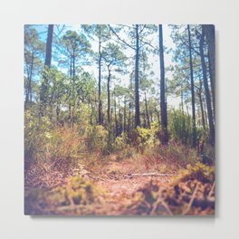 Trees in the Middle of Wilderness Metal Print