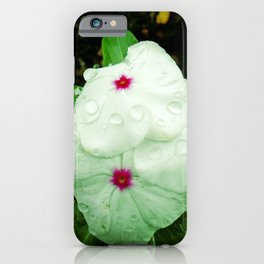 White Periwinkle with Water Droplets iPhone Case