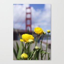 nature and architecture Canvas Print