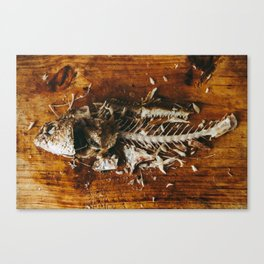 le fish Canvas Print