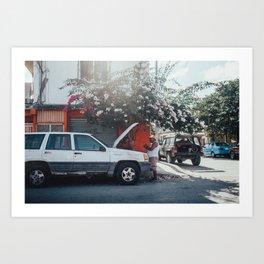 Mexico XIX Art Print