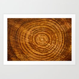 The Rings of Time Art Print